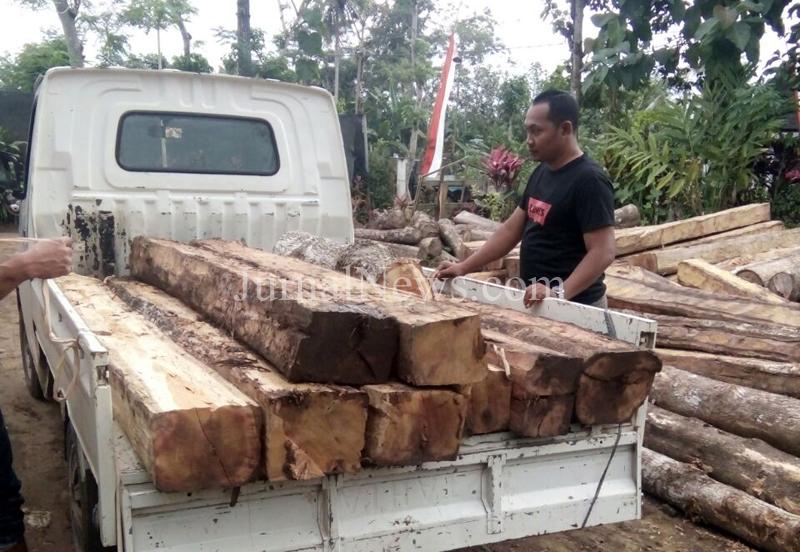 Barang bukti kayu jati olahan yang diamankan Polmobhut KPH Banyuwangi Selatan. (Ron/JN)