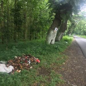 Foto: lokasi tumpukan sampah ditepi jalan.