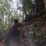 Foto: Hermawan sedang cek lokasi tawon vespa di lembah kali stail.