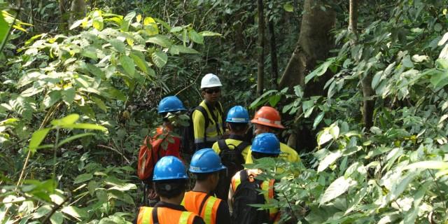 Ratusan Satwa di Gunung Tumpang Pitu Masih Tetap Terjaga