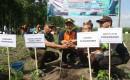 Perhutani Banyuwangi Selatan Laksanakan Starting Tanaman