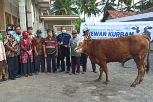 PT BSI Salurkan Bantuan Hewan Kurban Sebanyak 72 Ke Masyarakat Sekitar