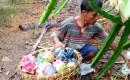 Kisah Giren, Petani Buah Naga Yang Pantang Menyerah Walau Harga Tidak Setabil