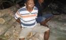 Timin Pencuri Kayu Jati Ditangkap Dirumahnya Tanpa Perlawanan