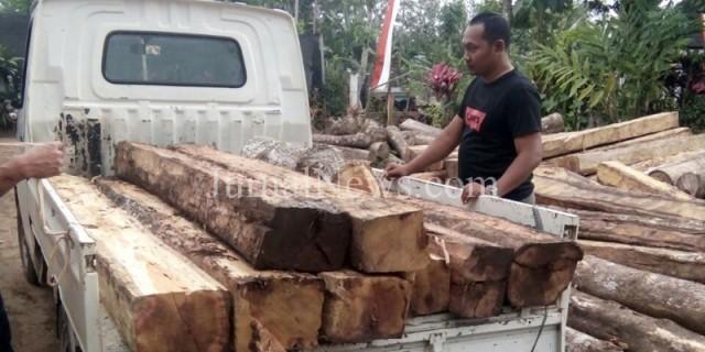 Perhutani Angkut Kayu Jati Ilegal di Kebun Naga